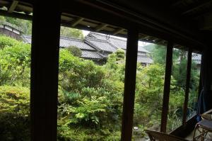 雨の庭を部屋から眺めるとなかなかいい感じで好き。